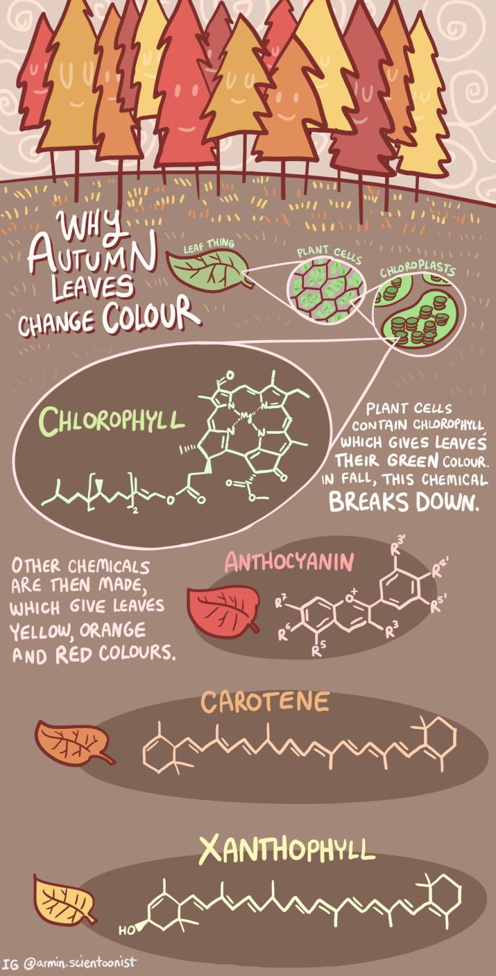 changecolour